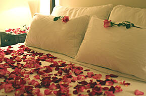 Life Is Not A Bed Of Roses Poem By Ch Erie De Perrot On